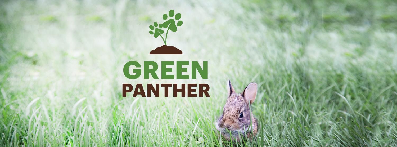 Social Media Cover - Adelphi Green Panther Wallpaper