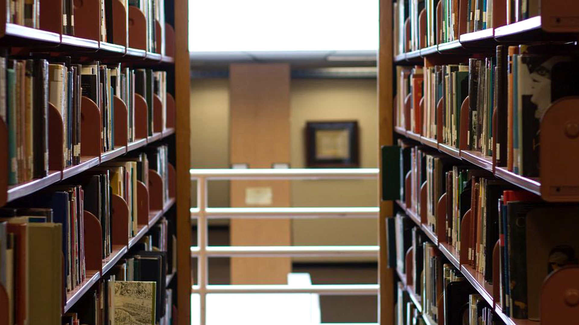 Library Shelves Background - Design Preview